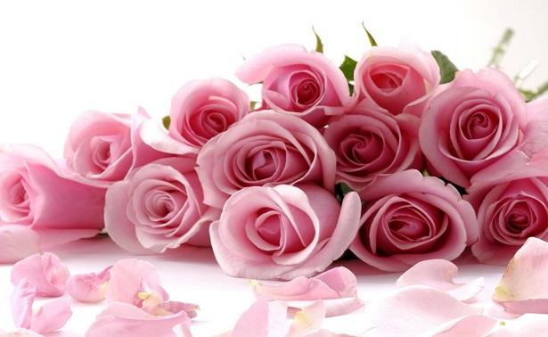 conservar ramos de flores - Imagenes De Ramos De Flores