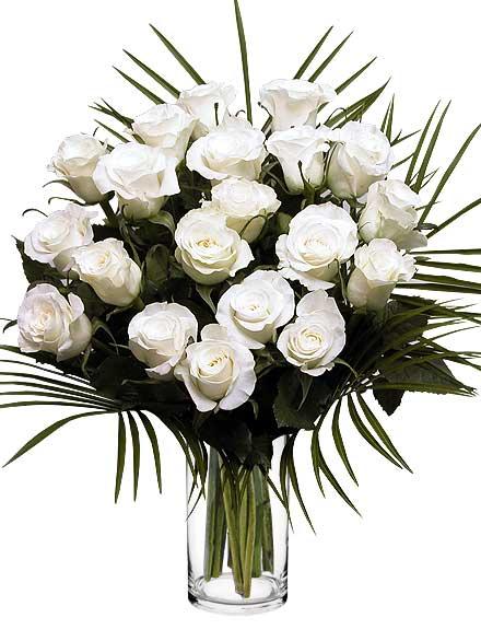 Ramo de 20 Rosas blancas - Floristería Bilbao Gandarias
